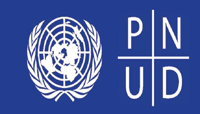 Offre d'emploi : le PNUD/Guinée recrute plusieurs consultants